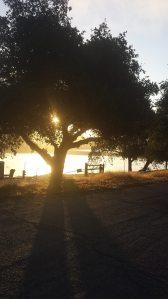 Sunrise Santa Ynez